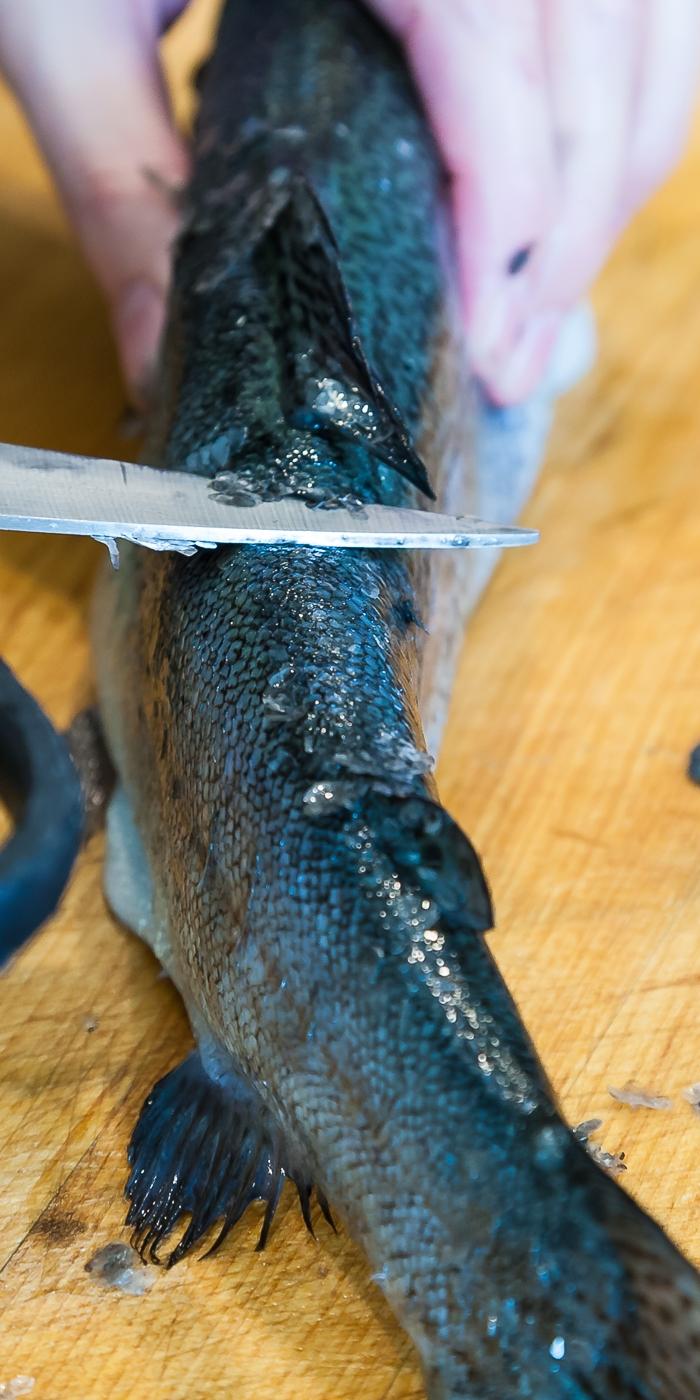 creamy fish soup - de-scaling